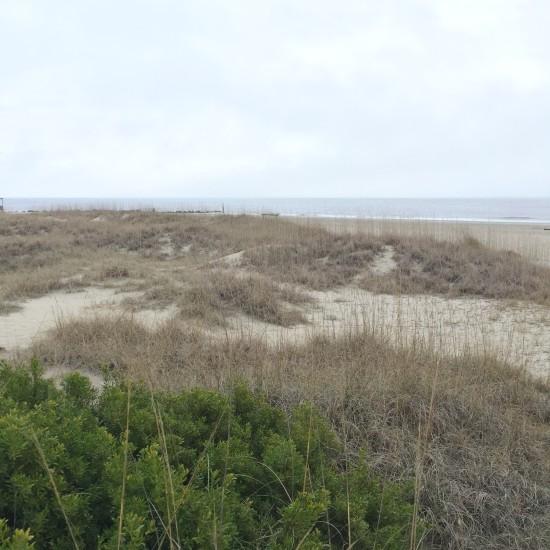 Sand Dune on Tybee Island, GA
