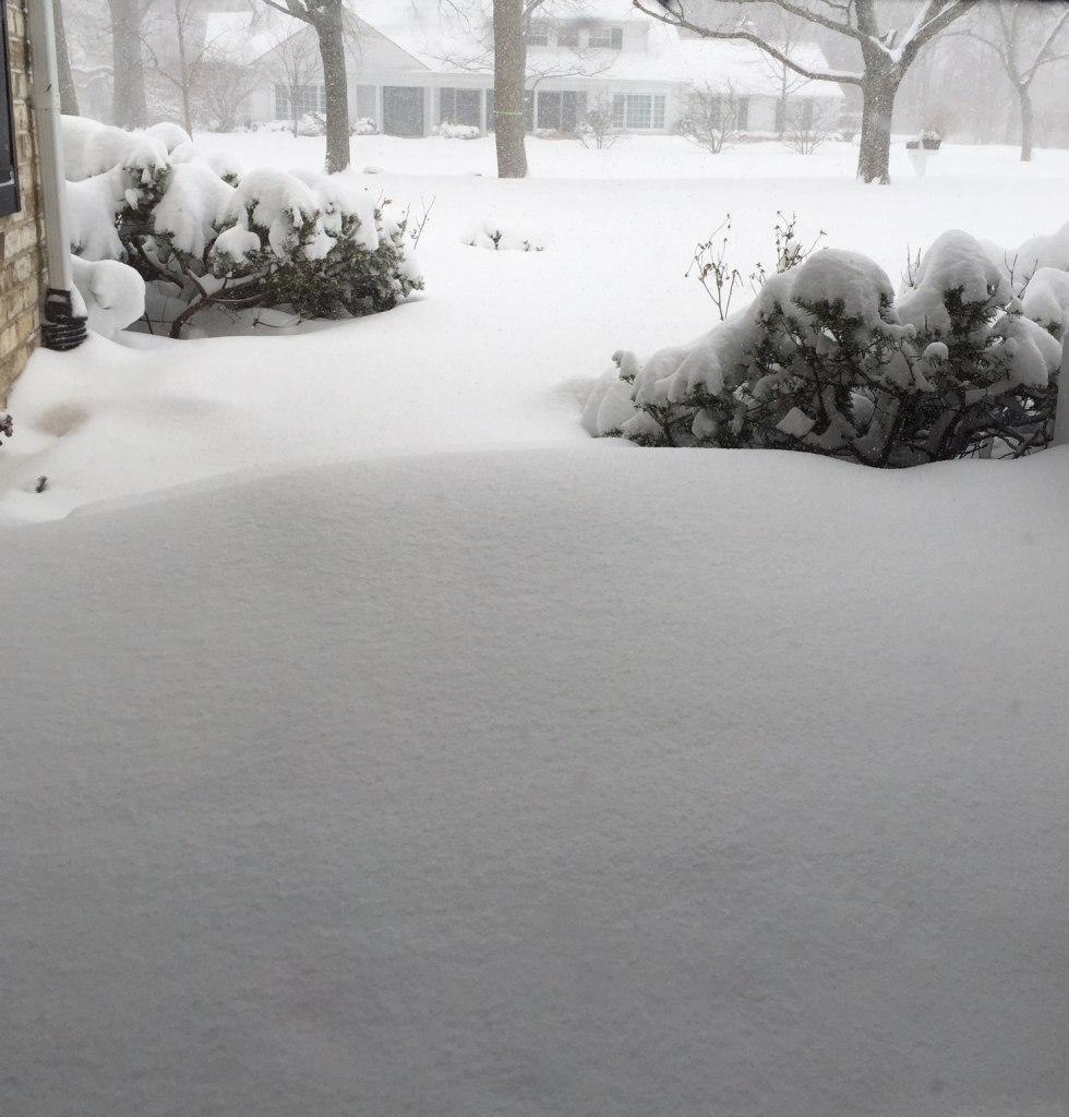 February 1, 2015 Blizzard