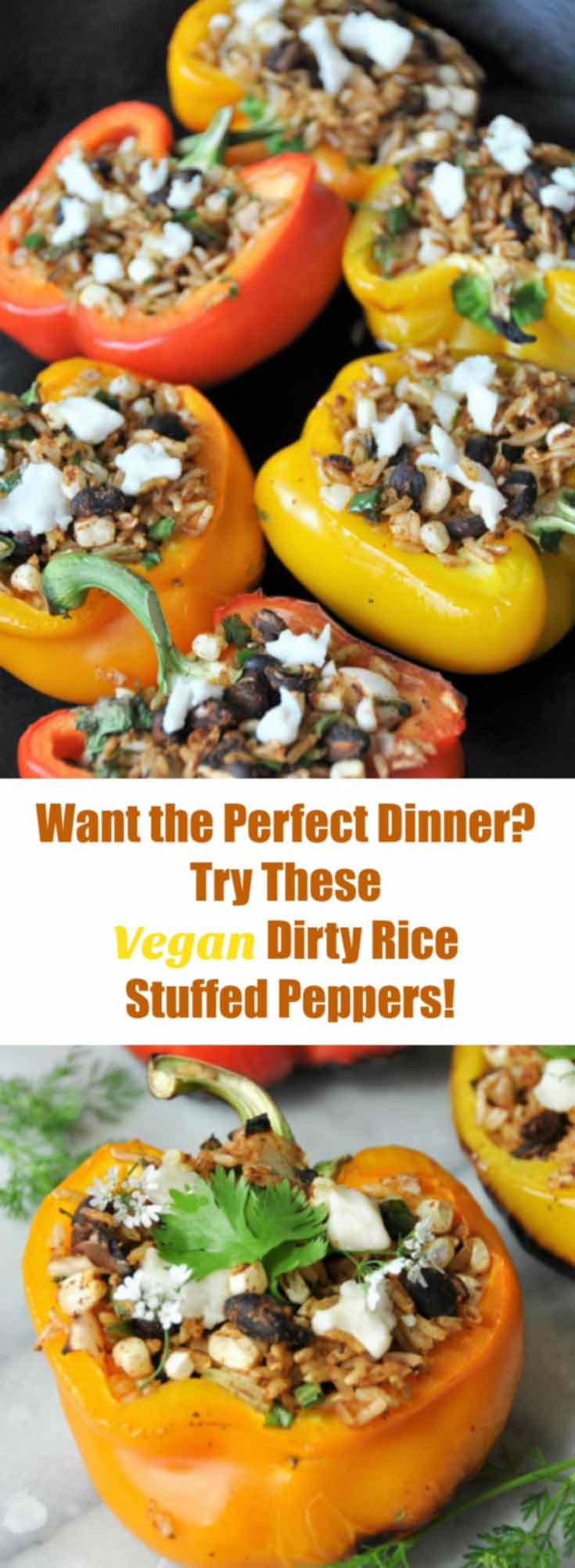Take your stuffed pepper recipe to another level! Stuff them with dirty rice and grill them. So delicious! www.veganosity.com