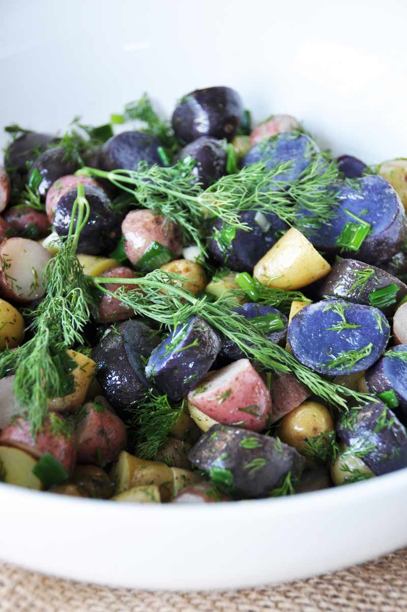 A c;lose up shot of tri-colored potato salad with sprigs of dill in a white bowl.