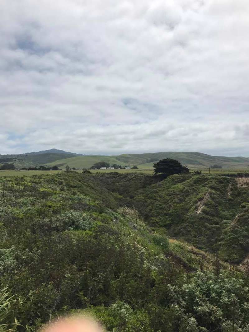 Hills of Half Moon Bay, CA
