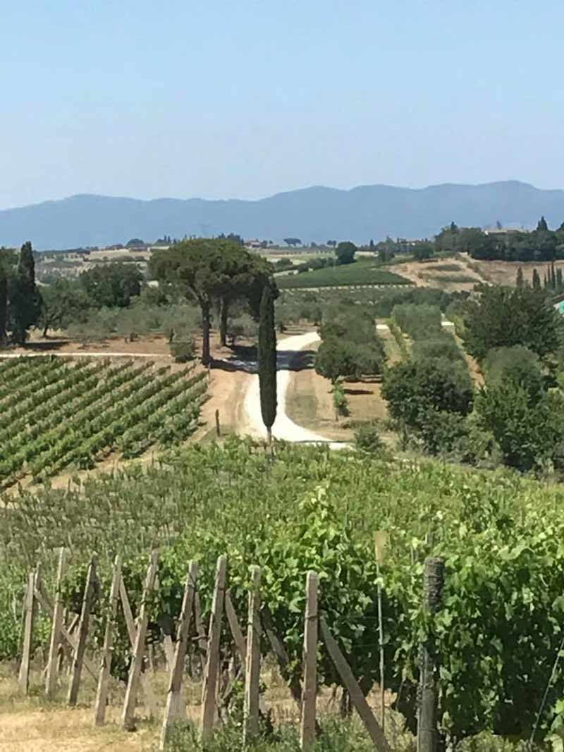 Winery in Tuscany, Italy