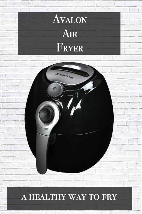 avalon air fryer with brick background