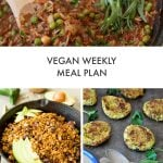 Vegan Weekly Meal Plan in Under One Hour
