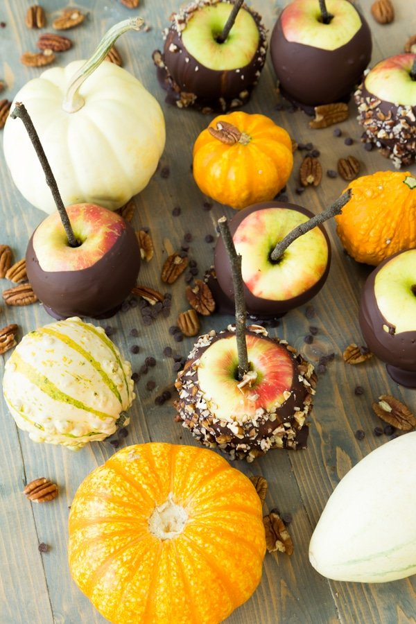 An overhead shot of chocolate dipped apples with pumpkins and nuts scattered around
